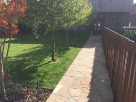 Paths and Driveways